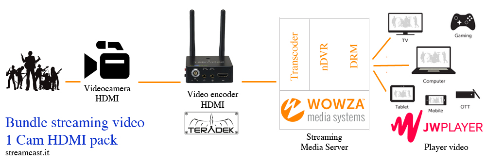 streaming video liv con telecamere HDMI